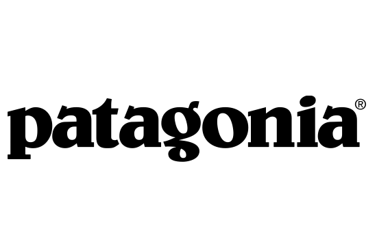 Patagonia's mission and vision statements