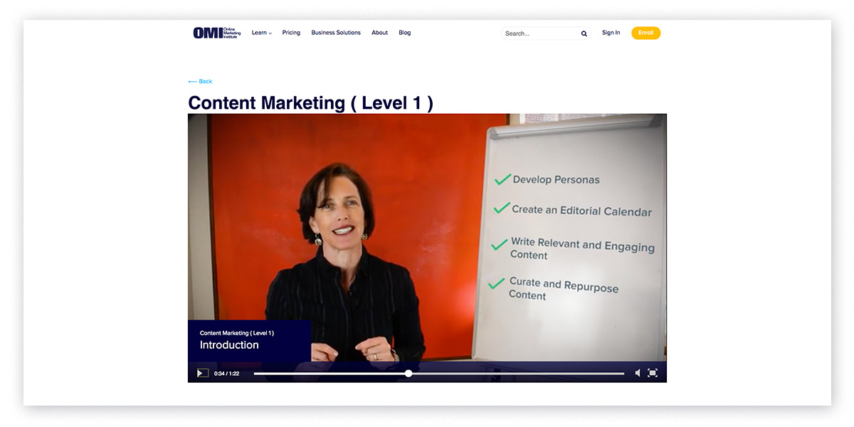 Online content marketing training and courses