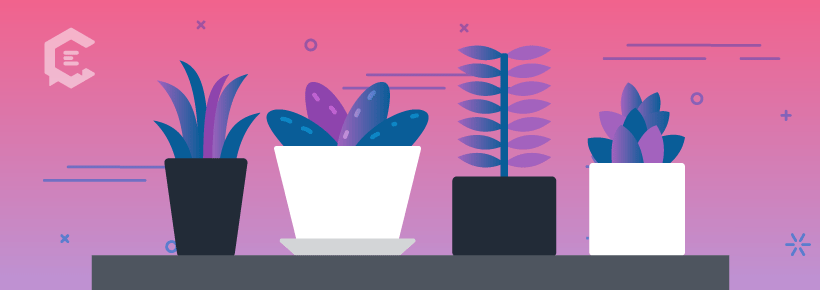 You probably can't kill these home office plants.